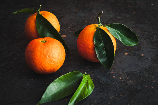 Tangerines – zdjęcie