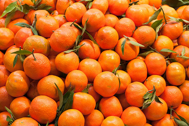 Tangerines  tangerine stock pictures, royalty-free photos & images