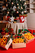 Tangerines under the christmas tree. Holiday concept