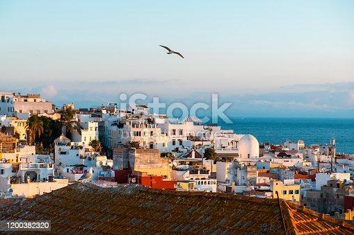 istock Tangier medina at dawn, seagull 1200382320