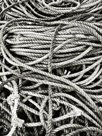 501889762 istock photo Tangled Fishing rope 826740874