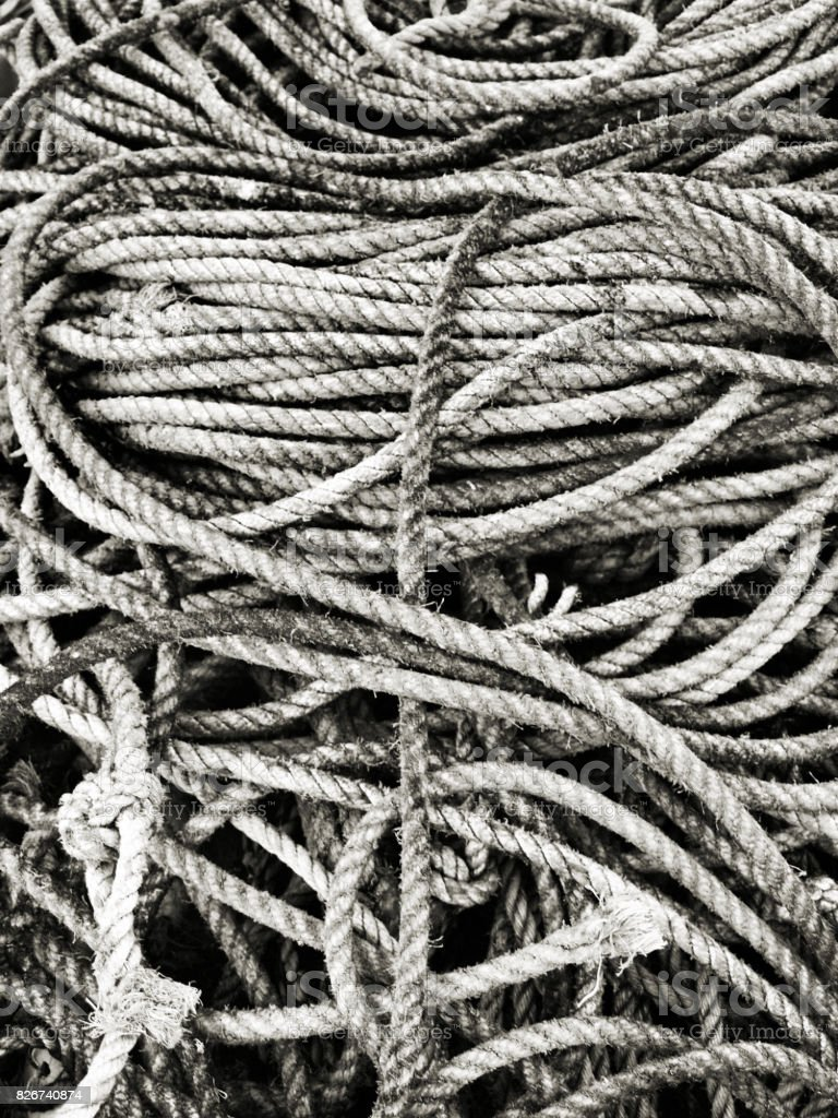 Tangled Fishing rope stock photo