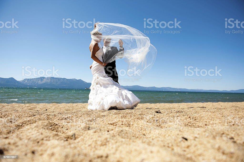 tangled royalty-free stock photo