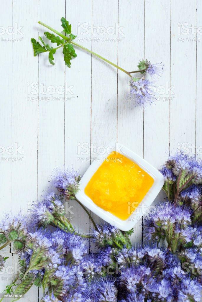 Tansy honey stock photo