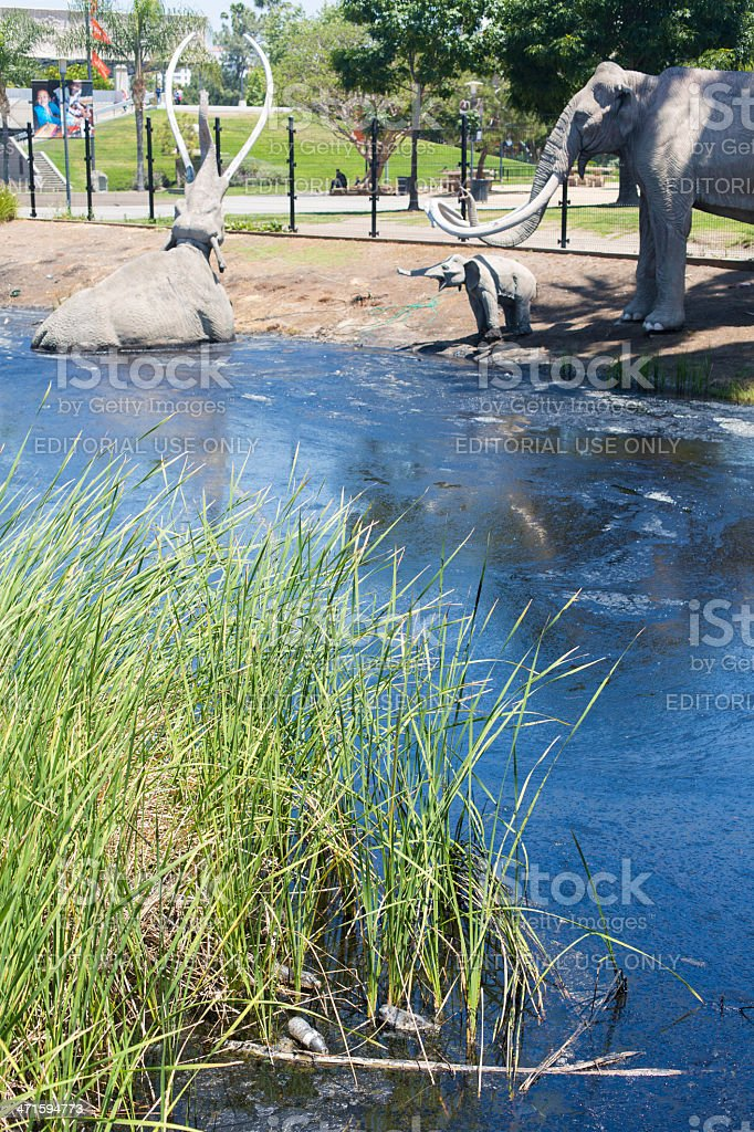 Tar Pit Oil Slick royalty-free stock photo