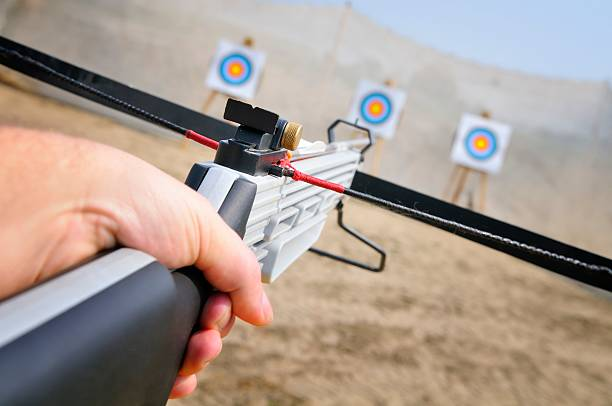 target shooting - crossbow stock pictures, royalty-free photos & images