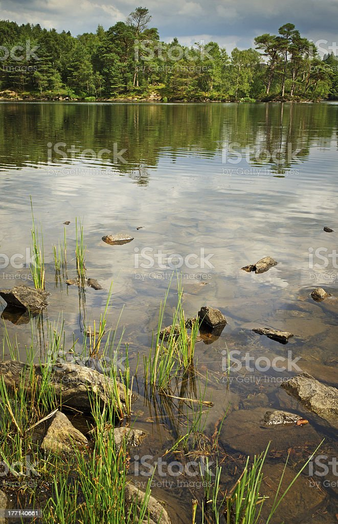 Tarn Hows royalty-free stock photo