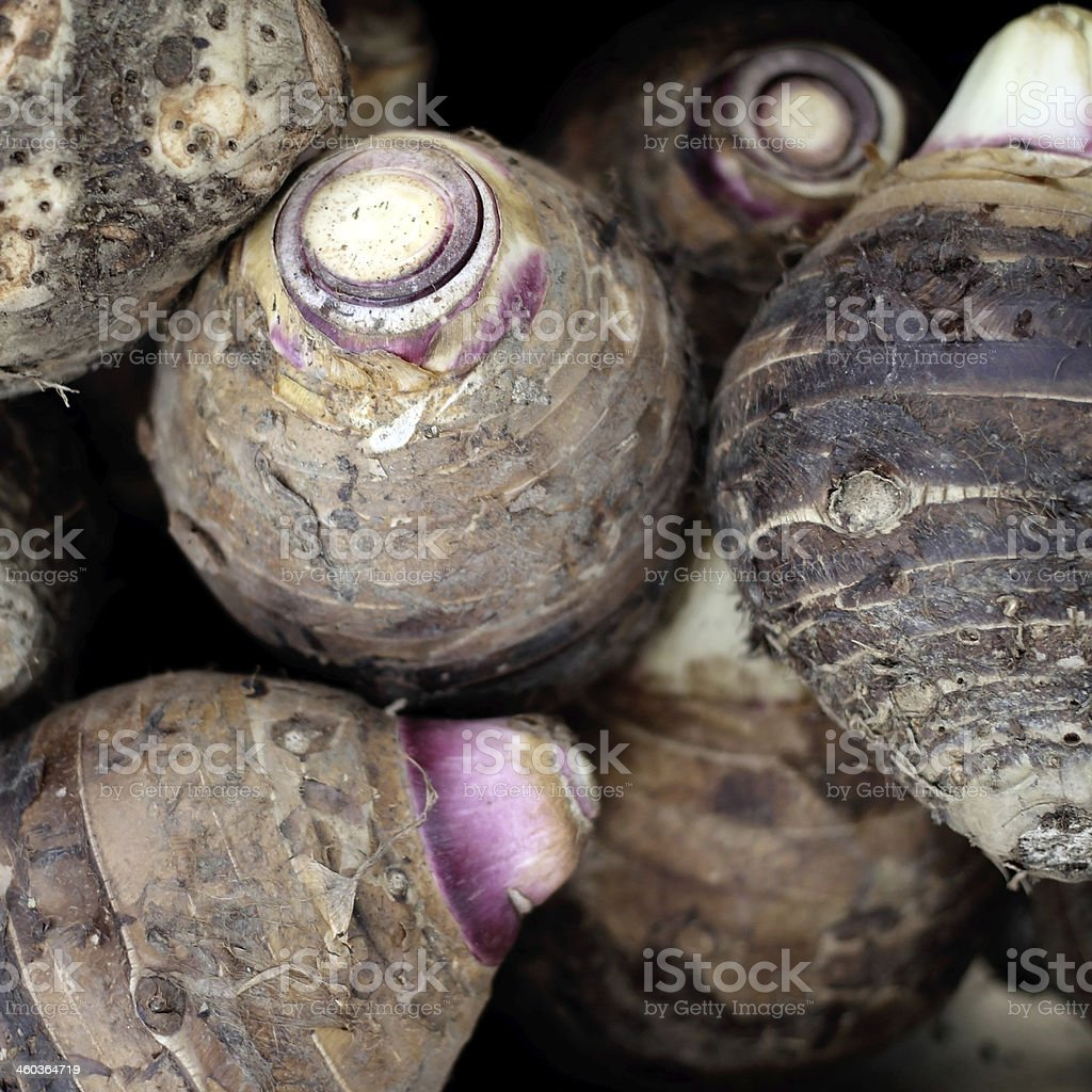 taro royalty-free stock photo
