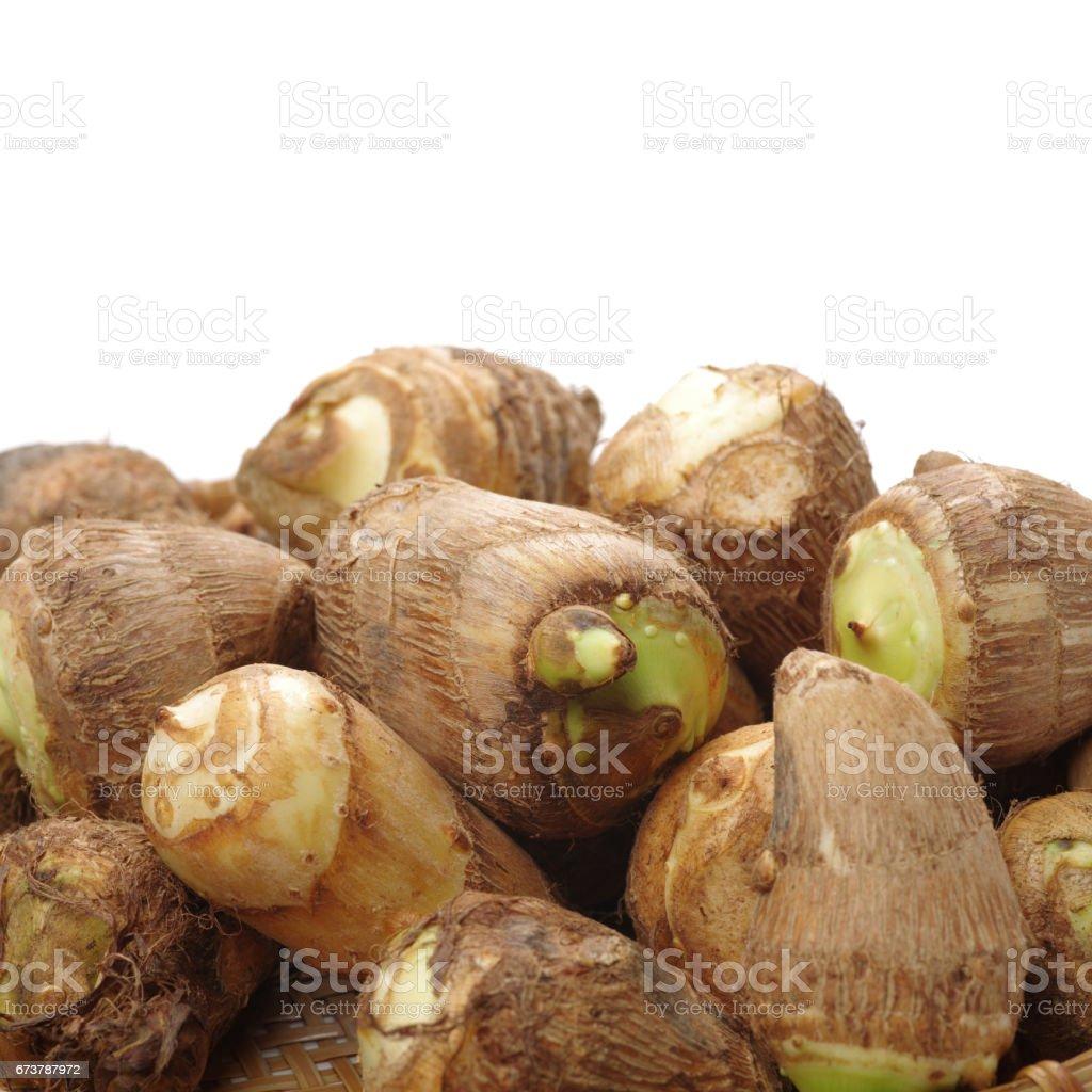 Taro racines sur fond blanc photo libre de droits