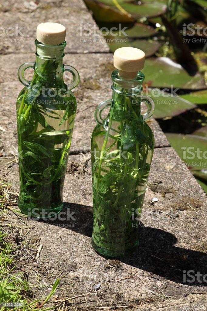 Tarragon vinegar royalty-free stock photo