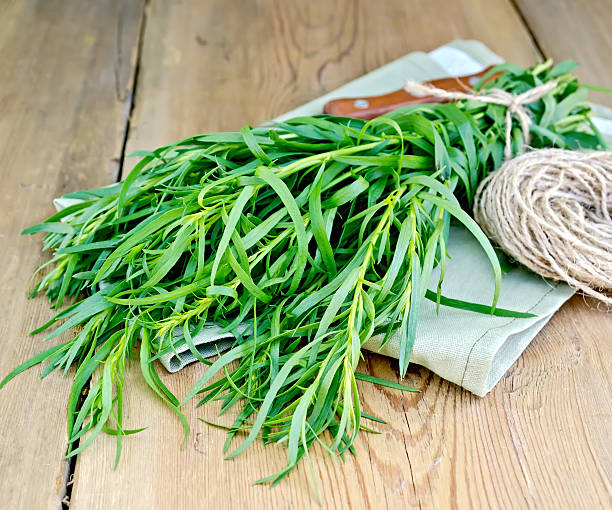 tarragon with a knife and twine on the board - tarragon stock photos and pictures