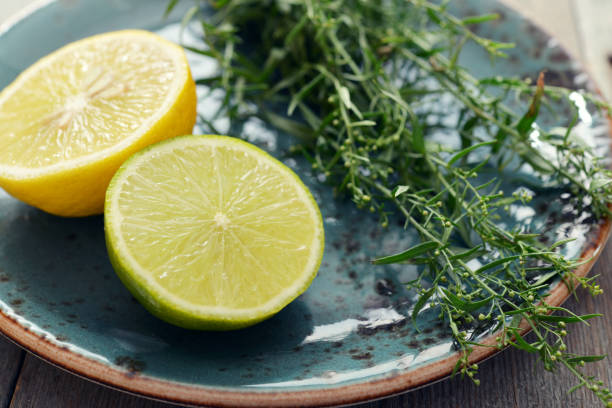 tarragon with lemon and lime - tarragon stock photos and pictures