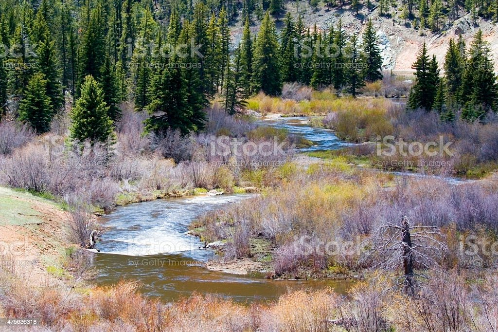 Tarryall Creek in the Lost Creek Wilderness stock photo