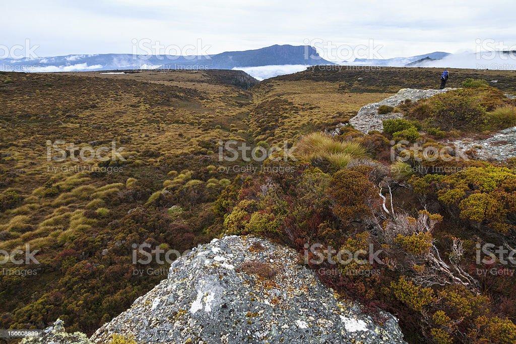 Tasmania royalty-free stock photo