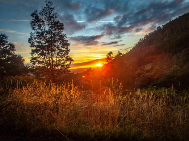 Tasmania Sunrise stock photo