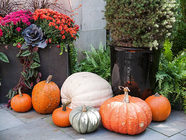 Tasteful Fall Decorations stock photo