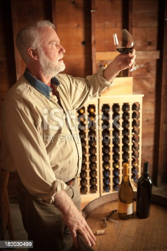 Subject: Winemaker and vintner tasting and studying his white wine in the winery cellar.Location: USA.