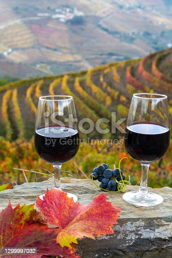 Tasting of Portuguese fortified dessert and dry port wine, produced in Douro Valley with colorful terraced vineyards on background in autumn, Portugal