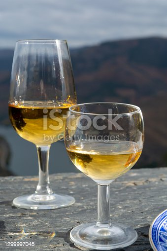Tasting of Portuguese fortified dessert and dry port wine, produced in Douro Valley with Douro river and colorful terraced vineyards on background in autumn, Portugal