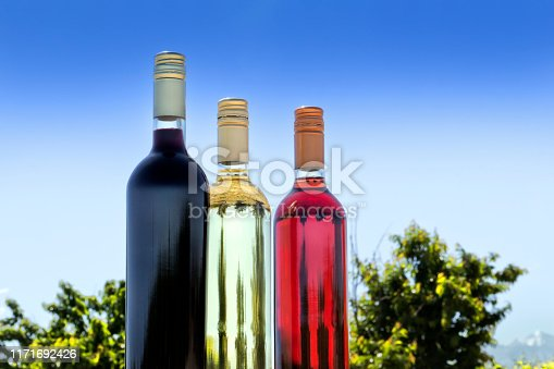 Red, white, and rosé wine, in the vineyard.