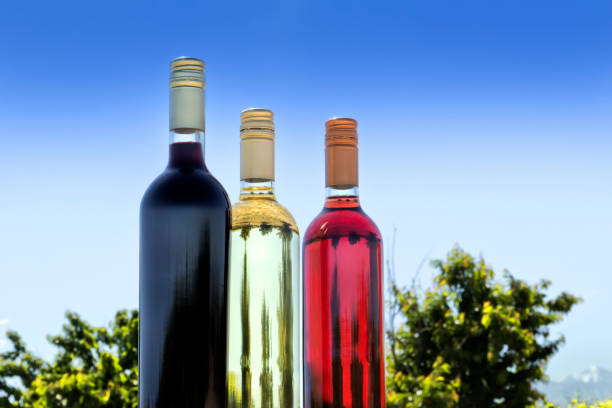 Tasting of red, white, and rosé wine, at your terroir. stock photo