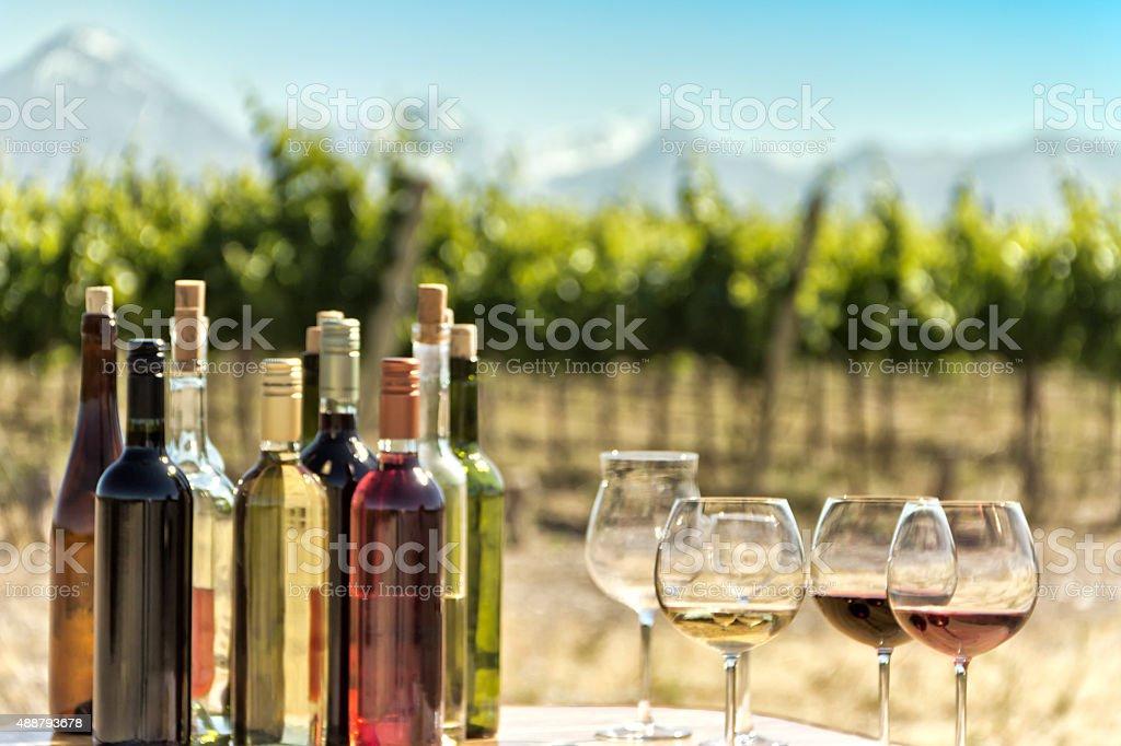Tasting of wines stock photo