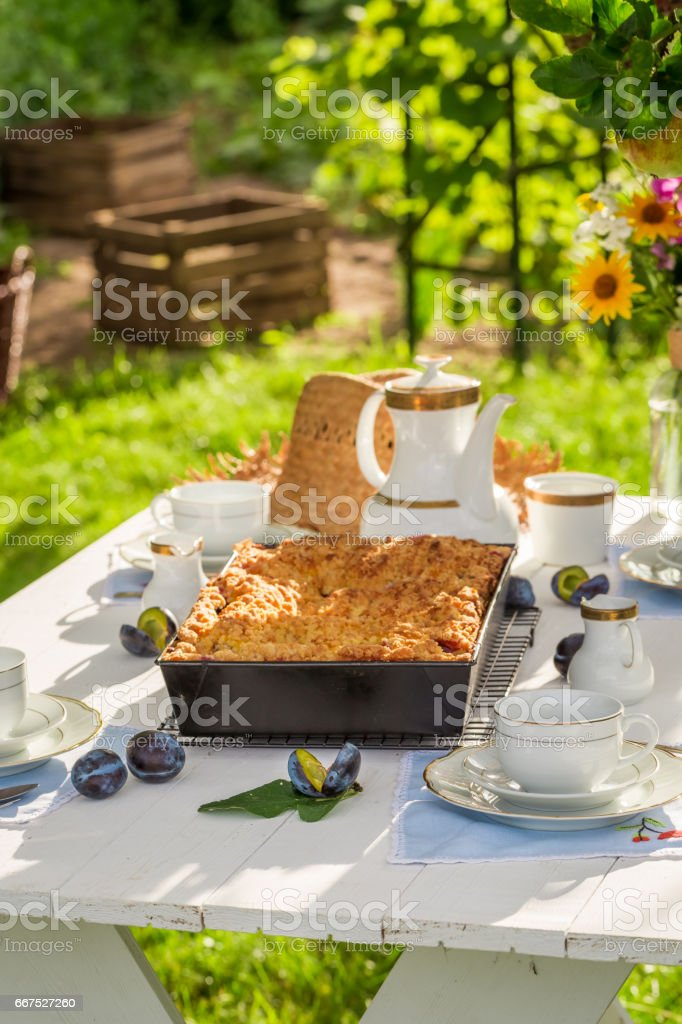 Tasty cake with plum served with coffee in the countryside foto stock royalty-free