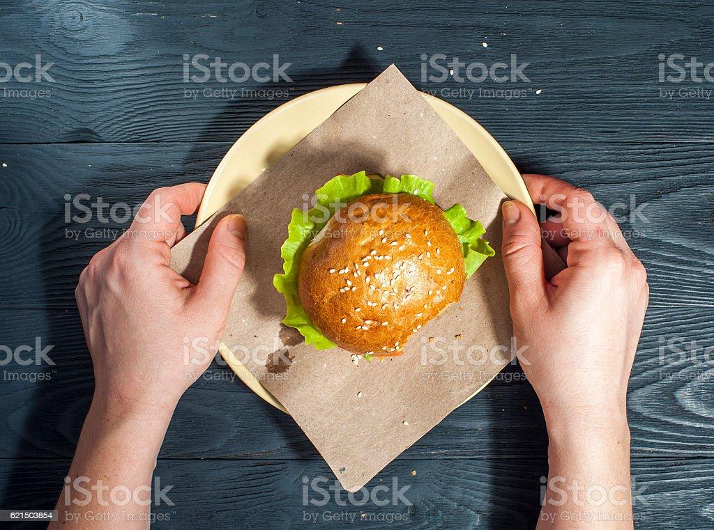 Tasty Hamburger in female hands photo libre de droits