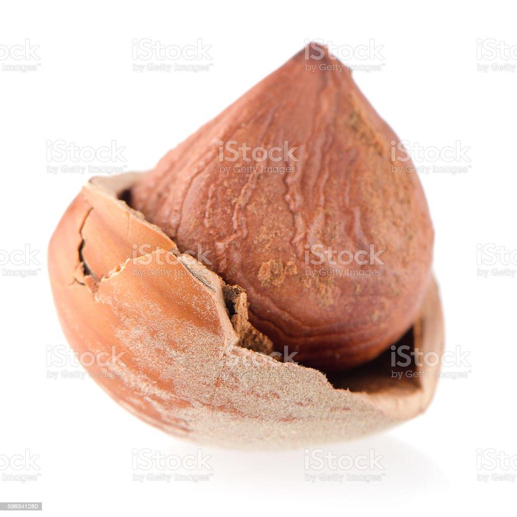Tasty hazelnuts royalty-free stock photo