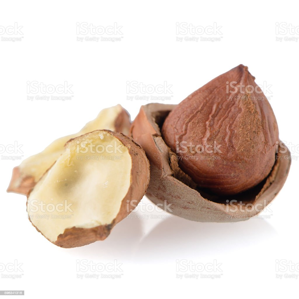 Tasty hazelnuts royalty-free stock photo