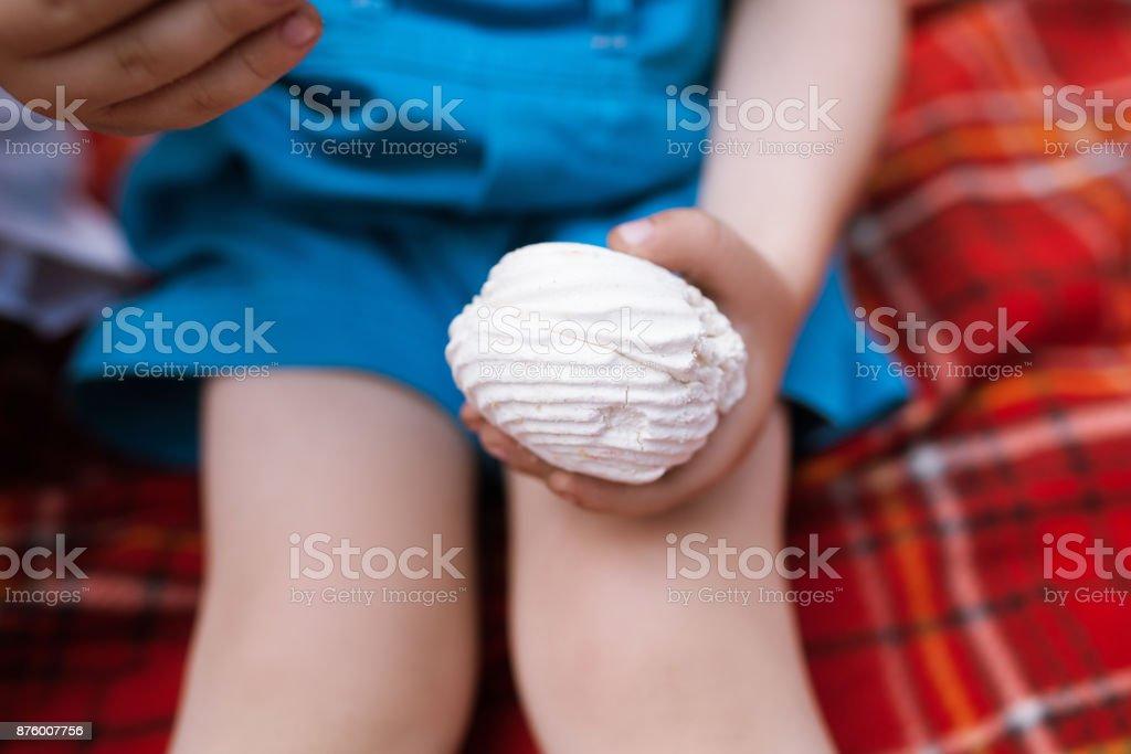 Tasty marshmallows nature picnic baby concept. stock photo