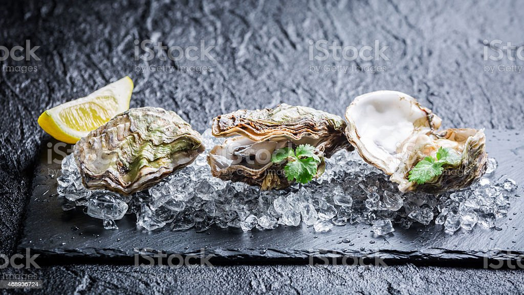 Tasty oysters on ice stock photo