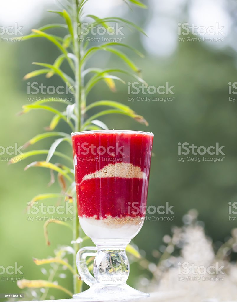 Tasty strawberry dessert tiramisu royalty-free stock photo