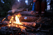 Tasty, sweet marshmallow on a special stick is fried by a woman over a campfire, on a summer evening, in the forest, against a background of trees.