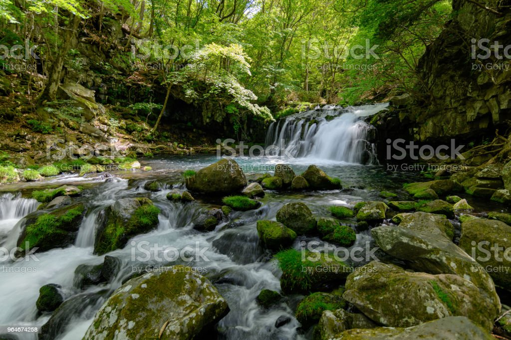 Tateshina waterfall of the fresh green royalty-free stock photo