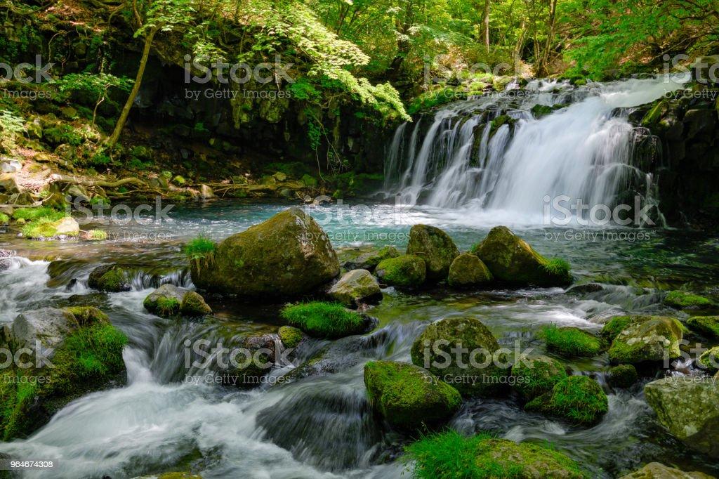 Tateshina waterfall of the fresh green royalty-free stock photo