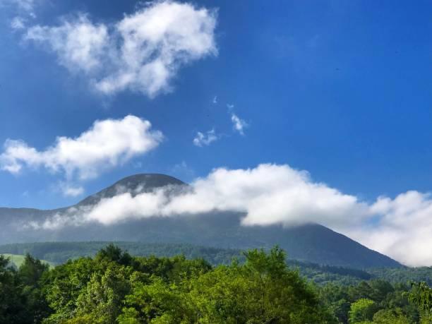 tateshinayama - forest bathing foto e immagini stock