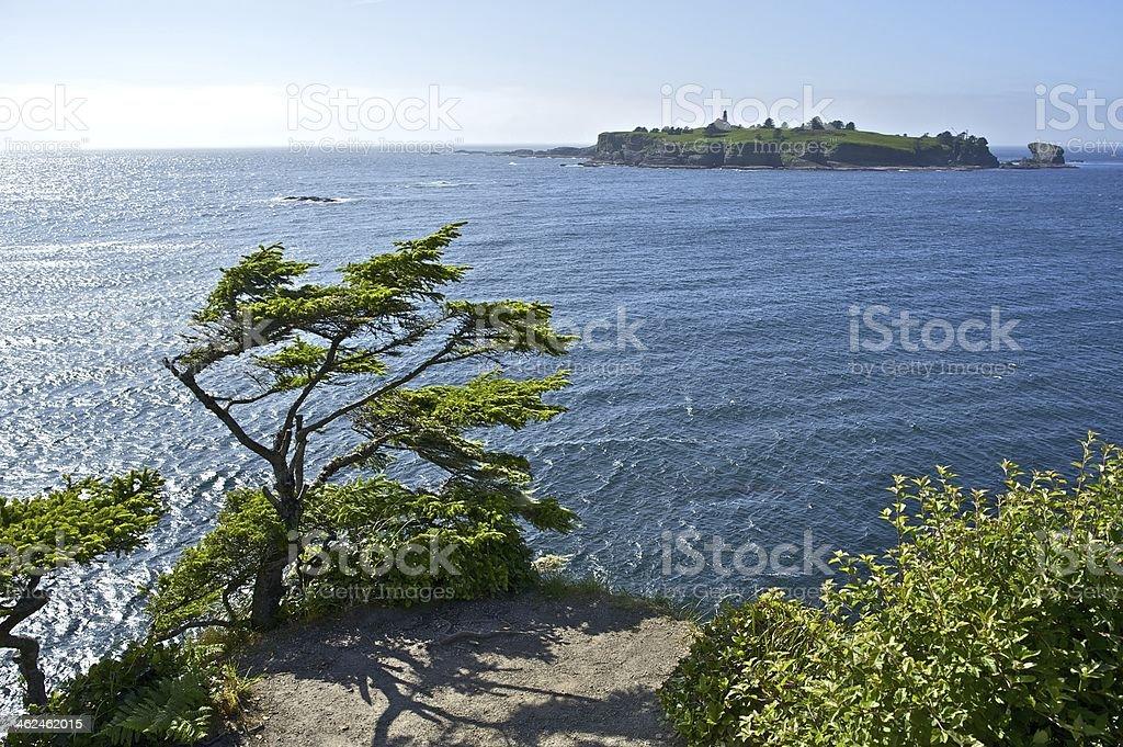 Tatoosh Island stock photo
