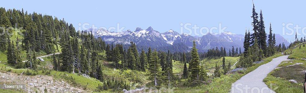 Tatoosh Range from Paradise royalty-free stock photo