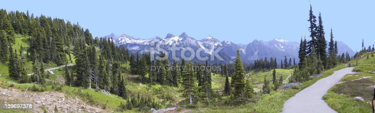 A view of the Tatoosh mountain range taken from the Paradise Valley on the south side of Mt. Rainier.