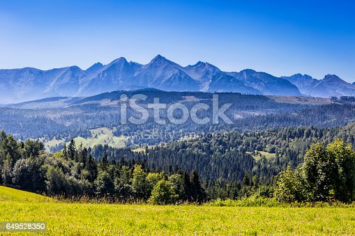 1130859000 istock photo Tatra Mountains landscape in summer, Poland 649528350