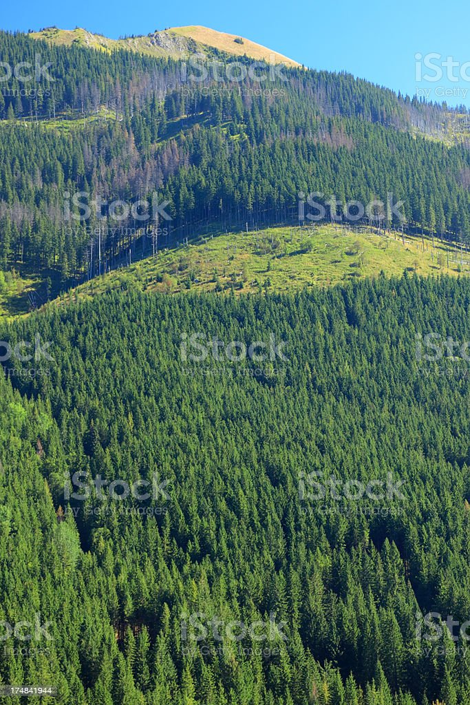 Tatra Mountains Landscape royalty-free stock photo