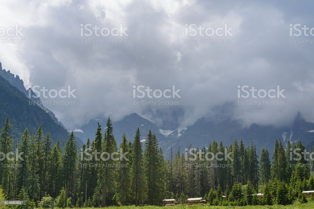 Montanhas Tatra - foto de acervo