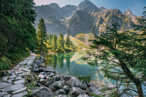tatra 국립 공원, 폴란드입니다. 작은 산 호수 zabie 이내 또는 małe 모르스키 이내 여름 아침에. 5 호수 골짜기입니다. 아름 다운 경치 볼 수 있습니다. 유럽 자연 - 카르파티아 산맥 뉴스 사진 이미지