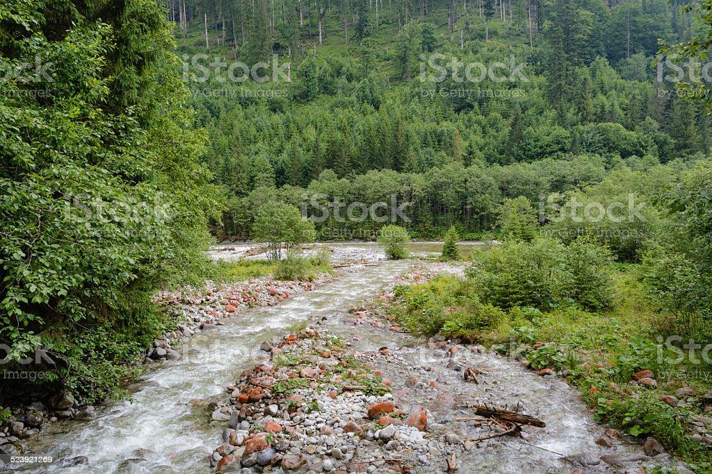 Rio de Tatra - foto de acervo