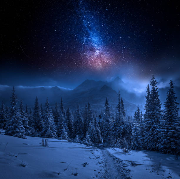 Best Snowy Night Stock Photos Pictures Amp Royalty Free