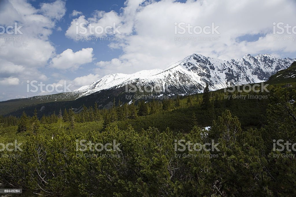 Tatry royalty-free stock photo