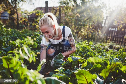 Tattooed Woman Farming in the Garden on the Organic Farm.