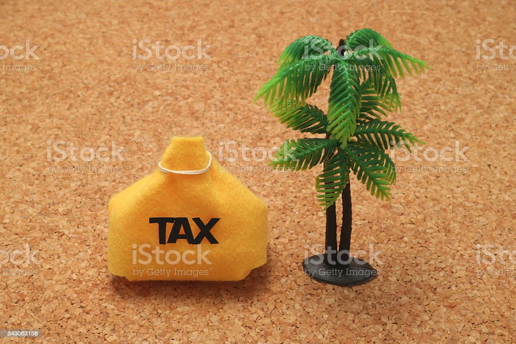 Tax and palm trees. stock photo