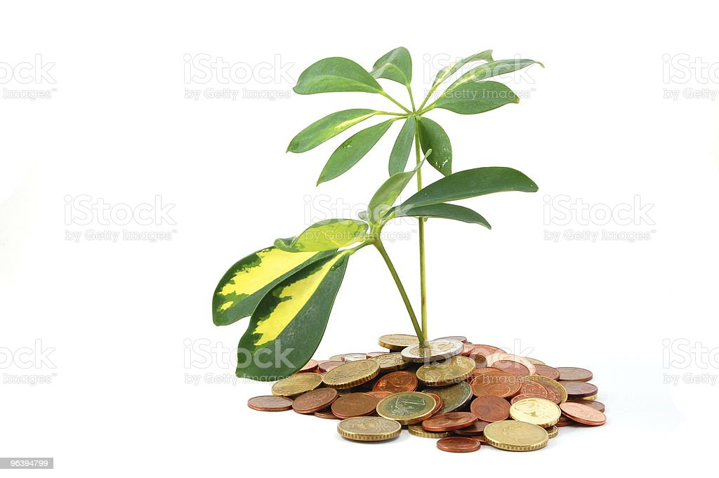 tax haven - Royalty-free Banking Stock Photo
